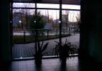 Mieszkanie do wynajęcia, Katowice Koszutka, 36 m²   Morizon.pl   9107 nr6