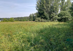 Działka na sprzedaż, Ciechocinek, 6517 m²   Morizon.pl   5724 nr9