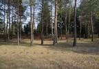 Dom na sprzedaż, Czarnów Starego Dębu, 131 m² | Morizon.pl | 9276 nr9