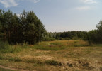 Działka na sprzedaż, Duży Dół, 2443 m² | Morizon.pl | 4146 nr3