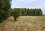 Działka na sprzedaż, Częstoniew-Kolonia, 3000 m² | Morizon.pl | 2585 nr4
