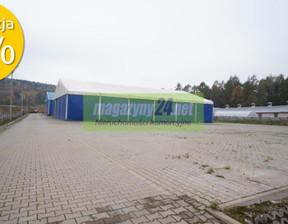 Działka na sprzedaż, Kielce, 30400 m²