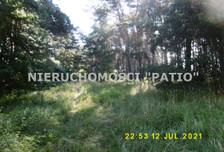 Działka na sprzedaż, Kórnik Dworzyska, 4700 m²
