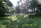 Morizon WP ogłoszenia   Działka na sprzedaż, Kórnik Dworzyska, 4700 m²   0220