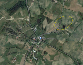 Działka na sprzedaż, Nowa Wieś Przywidzka Północna, 2000 m²