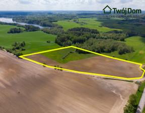 Działka na sprzedaż, Przytuły, 65300 m²