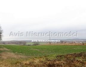 Działka na sprzedaż, Strzegom, 21000 m²