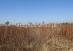 Działka na sprzedaż, Suchy Dwór, 3162 m² | Morizon.pl | 0770 nr6