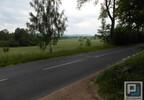 Grunt na sprzedaż, Piechowice, 15000 m²   Morizon.pl   1440 nr9