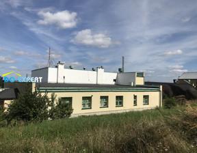 Magazyn na sprzedaż, Świdnica, 1000 m²