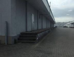 Hala do wynajęcia, Środa Wielkopolska, 800 m²