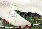 Działka na sprzedaż, Kalisz Pomorski Aleja Sprzymierzonych, 1379 m²   Morizon.pl   0981 nr6