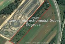 Działka na sprzedaż, Słabomierz Żyrardowska, 27300 m²