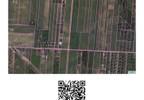 Działka na sprzedaż, Skrzeszew Spokojna, 3312 m² | Morizon.pl | 8079 nr6