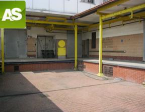 Lokal użytkowy na sprzedaż, Zabrze Mikulczyce, 1178 m²