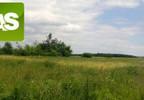 Działka na sprzedaż, Rzeczyce Wiejska, 9000 m² | Morizon.pl | 7169 nr4