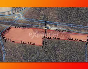 Działka na sprzedaż, Roszkowo, 52900 m²