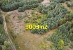 Morizon WP ogłoszenia | Działka na sprzedaż, Jarużyn, 3001 m² | 0097