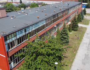 Hala na sprzedaż, Bydgoszcz Glinki-Rupienica, 2549 m²