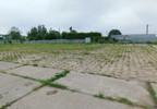 Działka na sprzedaż, Brzeźno, 14000 m² | Morizon.pl | 9292 nr2
