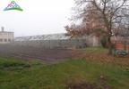 Działka na sprzedaż, Stargard Gdańska, 10395 m² | Morizon.pl | 0206 nr2