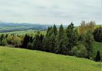 Działka na sprzedaż, Szlembark, 3500 m² | Morizon.pl | 8705 nr5