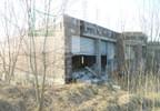 Działka na sprzedaż, Młynary, 2300 m² | Morizon.pl | 9548 nr14