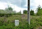 Działka na sprzedaż, Młynary, 2300 m² | Morizon.pl | 9548 nr5
