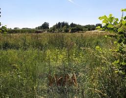 Morizon WP ogłoszenia | Działka na sprzedaż, Grójec, 2000 m² | 9060