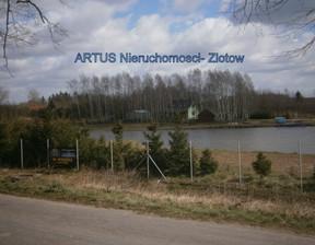 Działka na sprzedaż, Trudna, 23812 m²