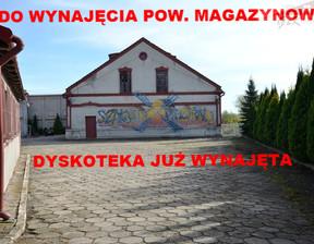 Obiekt do wynajęcia, Przemyśl Młynarska, 385 m²