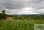 Działka na sprzedaż, Wapowce, 10540 m²   Morizon.pl   6323 nr5