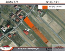 Morizon WP ogłoszenia | Działka na sprzedaż, Tuligłowy, 6000 m² | 5822