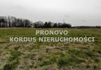 Działka na sprzedaż, Siecino, 4593 m² | Morizon.pl | 6398 nr5