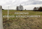 Działka na sprzedaż, Siecino, 4593 m² | Morizon.pl | 6398 nr2