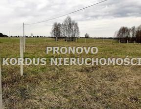 Działka na sprzedaż, Siecino, 4593 m²