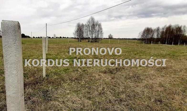 Działka na sprzedaż, Siecino, 4593 m² | Morizon.pl | 6398