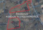 Działka na sprzedaż, Łabędzie, 78000 m² | Morizon.pl | 7542 nr2