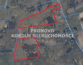 Działka na sprzedaż, Łabędzie, 78000 m²
