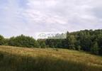 Działka na sprzedaż, Małkowo, 15800 m² | Morizon.pl | 6491 nr8