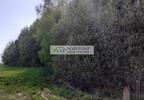 Działka na sprzedaż, Kolonia, 12200 m² | Morizon.pl | 0880 nr7