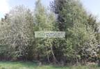 Działka na sprzedaż, Kolonia, 12200 m² | Morizon.pl | 0880 nr9