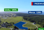 Działka na sprzedaż, Przewłoka, 14000 m²   Morizon.pl   6170 nr5