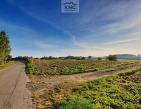 Działka na sprzedaż, Nałęczów, 8300 m²