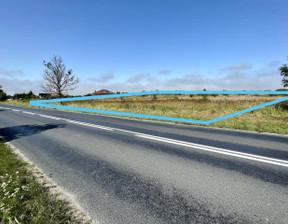 Działka na sprzedaż, Niekanin Polankowa, 10000 m²