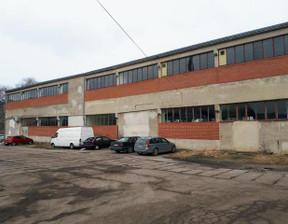 Komercyjne do wynajęcia, Kołobrzeg, 800 m²