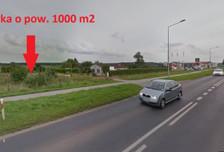 Działka na sprzedaż, Zieleniewo Szczecińska, 1000 m²