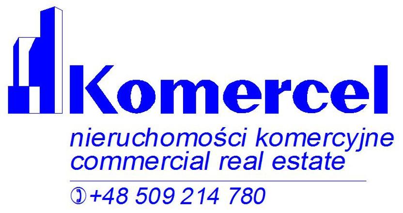 Lokal gastronomiczny do wynajęcia, Kraków Piasek, 272 m²   Morizon.pl   6302
