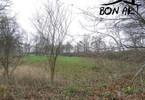 Morizon WP ogłoszenia | Działka na sprzedaż, Obrzycko Słopanowo, 52660 m² | 7961