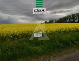 Morizon WP ogłoszenia | Działka na sprzedaż, Trzemiętowo, 1625 m² | 7048